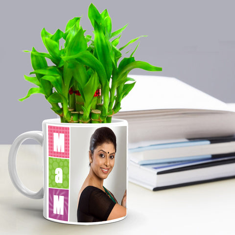 Buy Personalized Lucky Bamboo Mug Online, Teacher's Day Gift Ideas at Zestpics