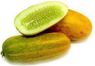 YELLOW CUCUMBER 500 GM