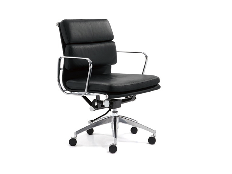 AIMS Padded Chair medium back