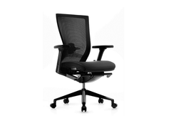FURSYS T50 Chair LQS B