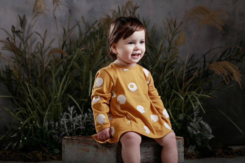organic girls dress mustard hedgehog swing dress anarkid