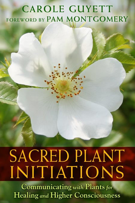 Sacred Plant Initiations Book