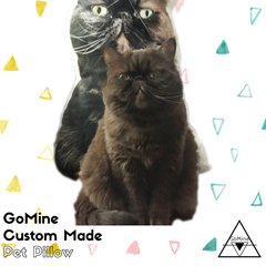 GoMine Pillow