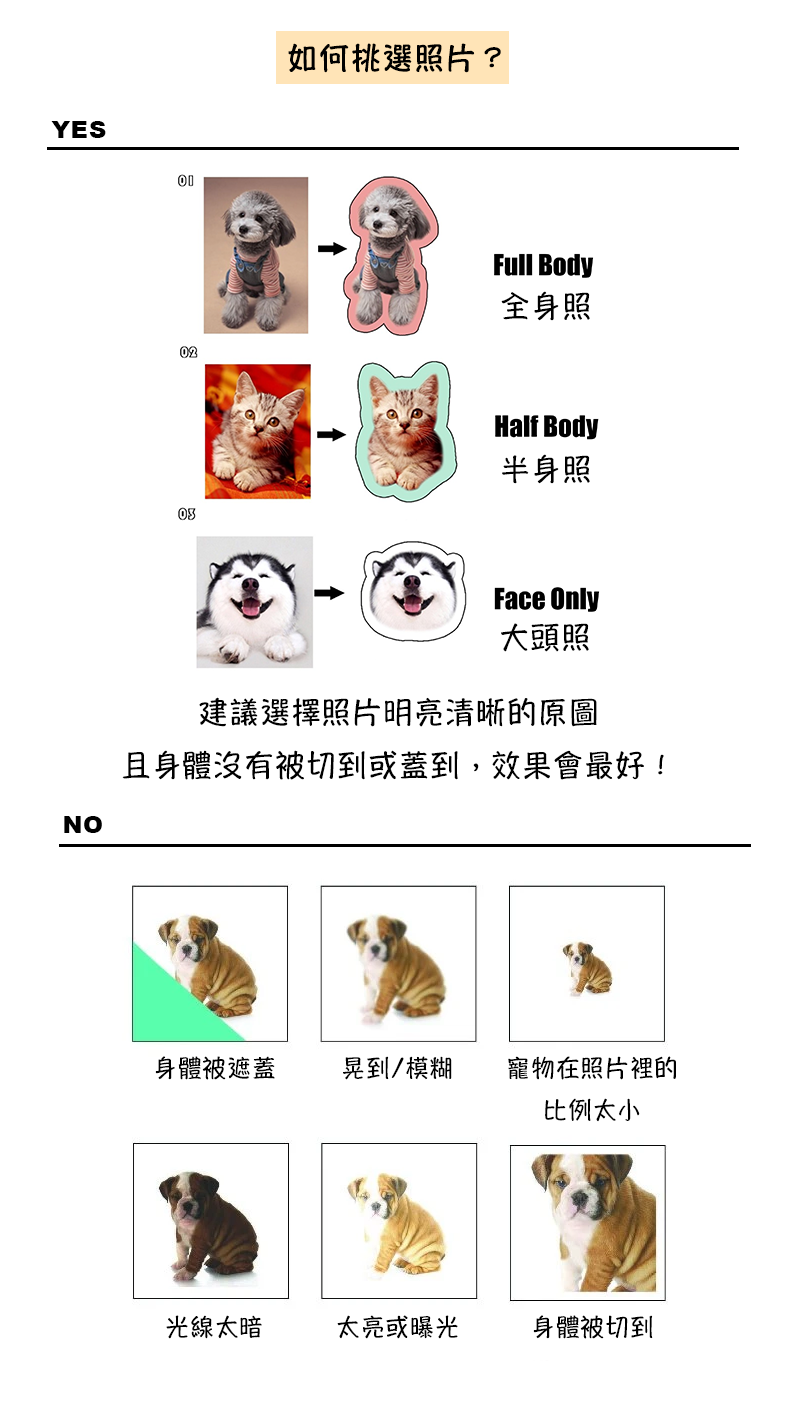 photo_guide_cn