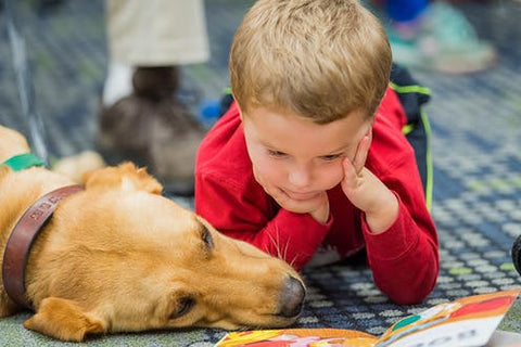 Health Benefit of Owning a Pet | Child Development | GoMine