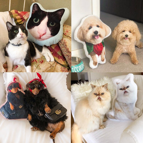 Custom Pet Photo Pillows_GoMIne
