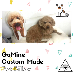 GoMine Pillows