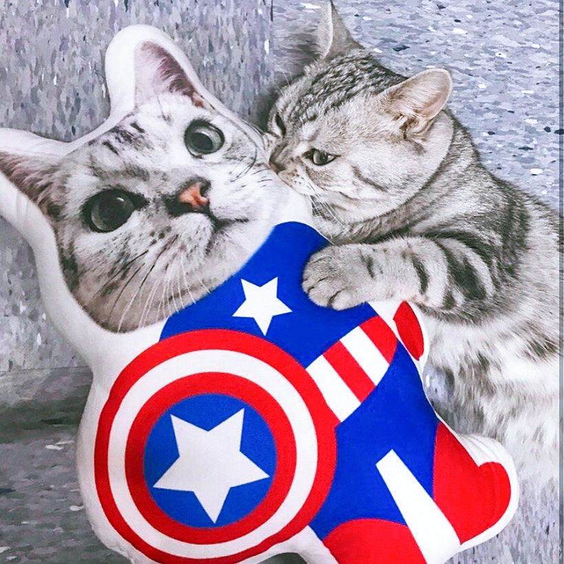 cat_superhero_pillow