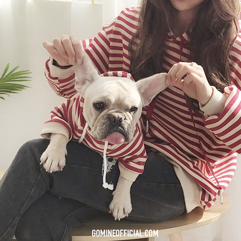 Matching Dog and Owner Striped Hoodie - GoMine