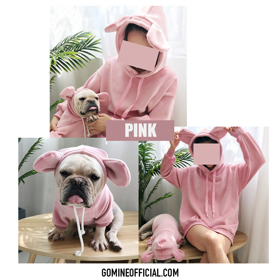Matching Dog and Owner Teddy Ear Hoodie - GoMine