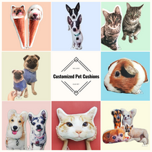 Custom Made Pet Pillows for Your Dog or Cat