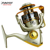 5.5:1 12Ball Bearing carretilhas fishing reel