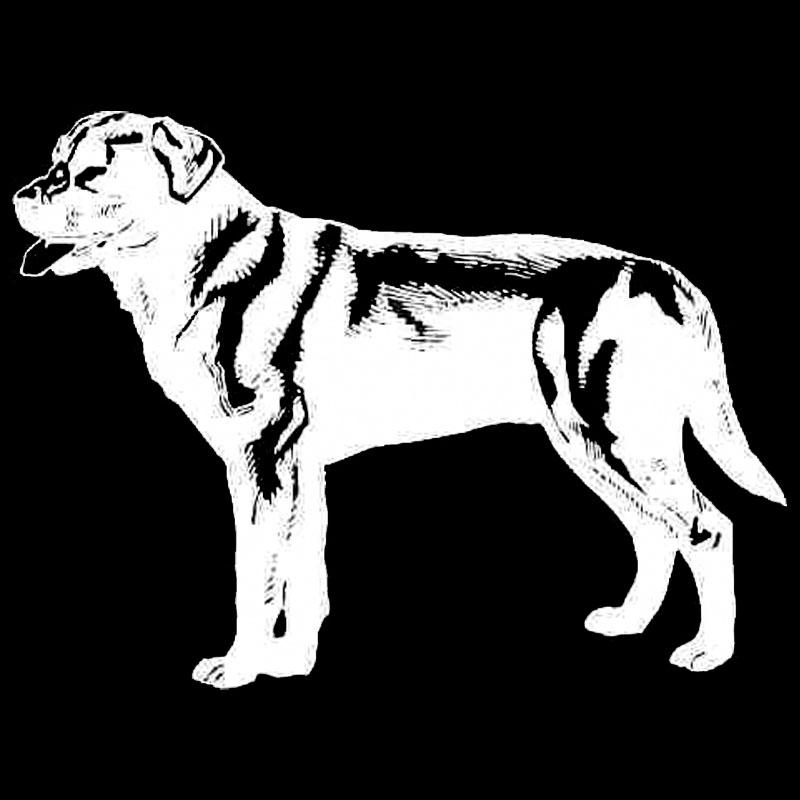 Labrador Reflective Car Stickers in Black and Silver