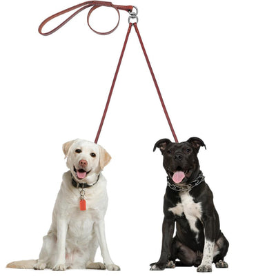 2 Way Real Leather Dog Walking Leash Dual No Tangle Lead For 2 Small To Medium Dogs Breeds - DogBlabShop