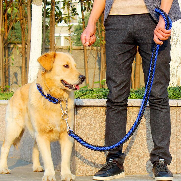 High Quality Collar - Large Dog Leash