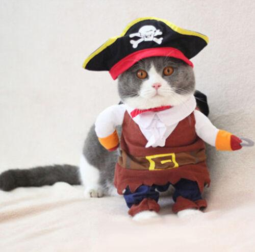 Pirate Costume for Cats