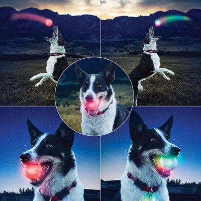 LED Bounce Balls for Dogs-Pet Product-DogBlabShop