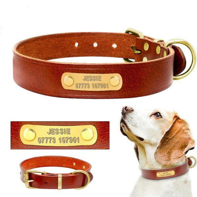 Personalized Dog Leather Collar! Genuine Leather - Engraving Customized Just For You-Collars-DogBlabShop