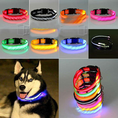 LED Glowing Nylon Collar - Night Safety Collars-Collars-DogBlabShop