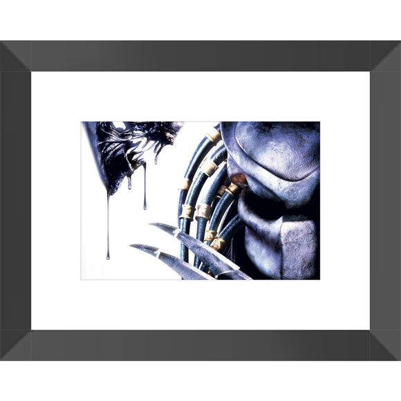 AVP Alien vs Predator Framed Fine Art Print #2 [20x25 cm, Black Frame] :: Mental XS Online