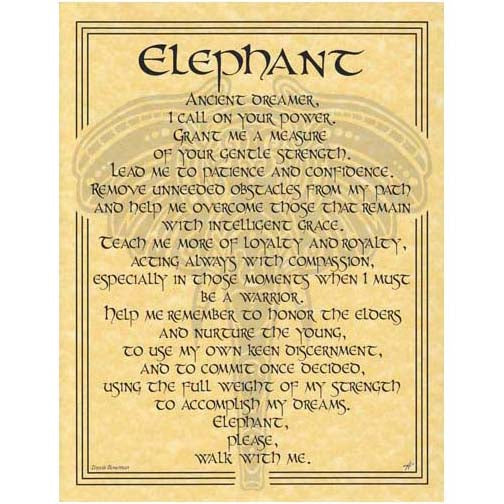 Elephant Prayer Poster