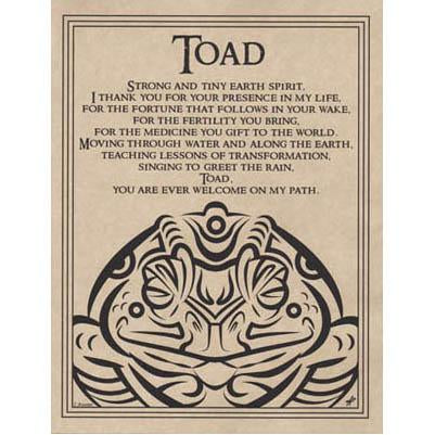 Toad Blessing Poster