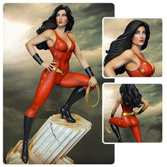 DC Comics Super Powers Teen Titans Donna Troy Maquette Statue 13
