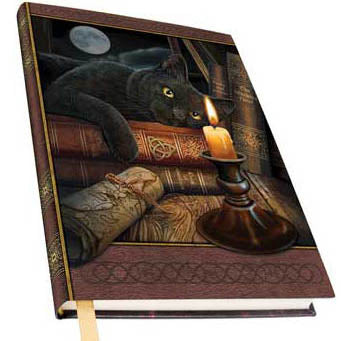 Witching Hour Metallic Accented Embossed Unlined Hardcover Journal by Lisa Parker (7