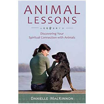 Animal Lessons by Danielle MacKinnon :: Mental XS Online