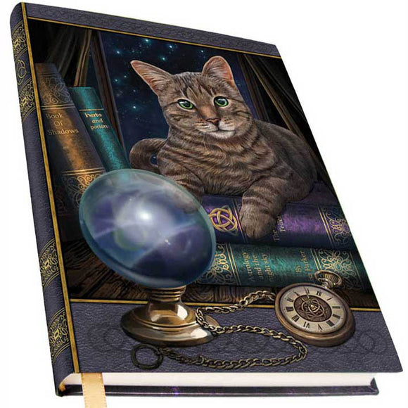Fortune Teller Metallic Embossed Unlined Journal by Lisa Parker (7