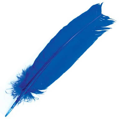 Blue Feather 12