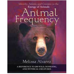 Animal Frequency by Melissa Alvarez  :: Mental XS Online