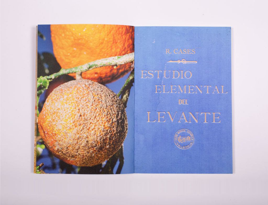 Estudio elemental del Levante - Dalpine