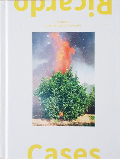 Estudio elemental del Levante (exhibition catalogue) - Ricardo Cases - Dalpine