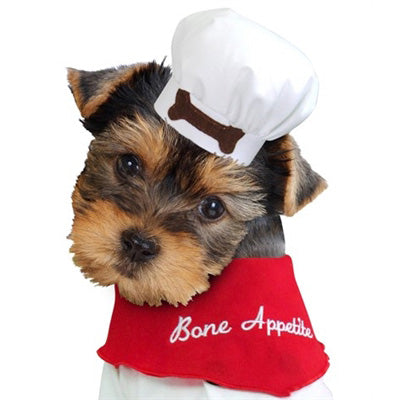 Chef Dog Hat - Bark Label