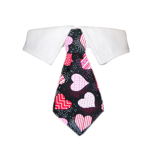 Amore Dog Shirt Collar - Bark Label