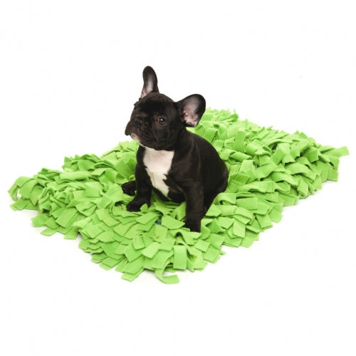 Meadow Duvet Lime Dog Bed