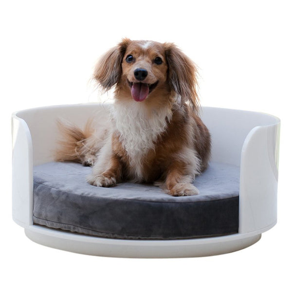 White Acrylic Curved Dog Bed