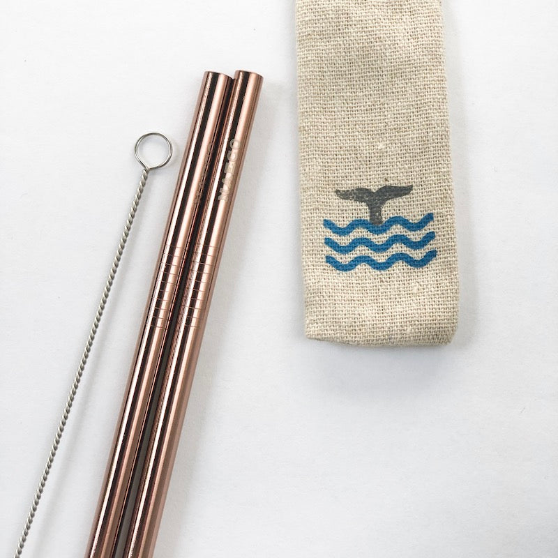 Stainless Steel Straws - 2-pack with linen pouch