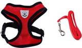 Breathable Mesh Harness & Leash Set For The Little Guys