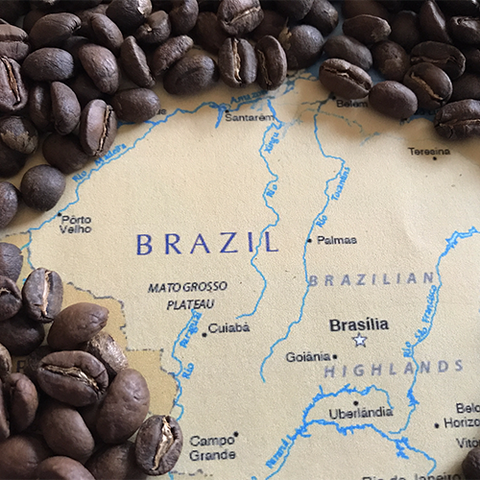 Brazil Decaf - 1 pound