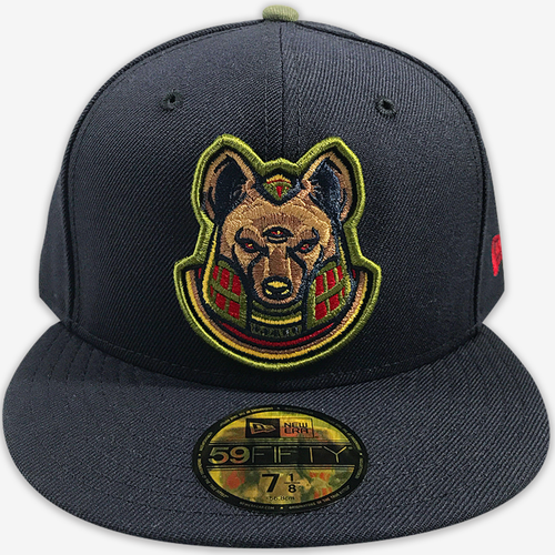 AOF Anpu (Anubis) Navy New Era Fitted