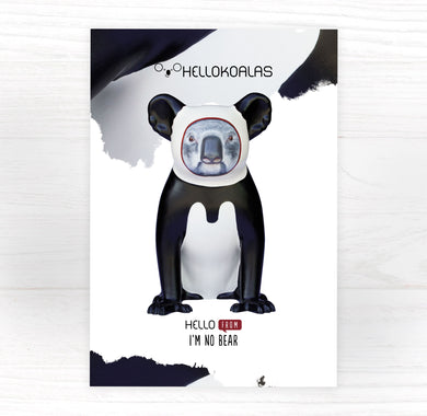 Hello Koalas I'm No Bear Postcard