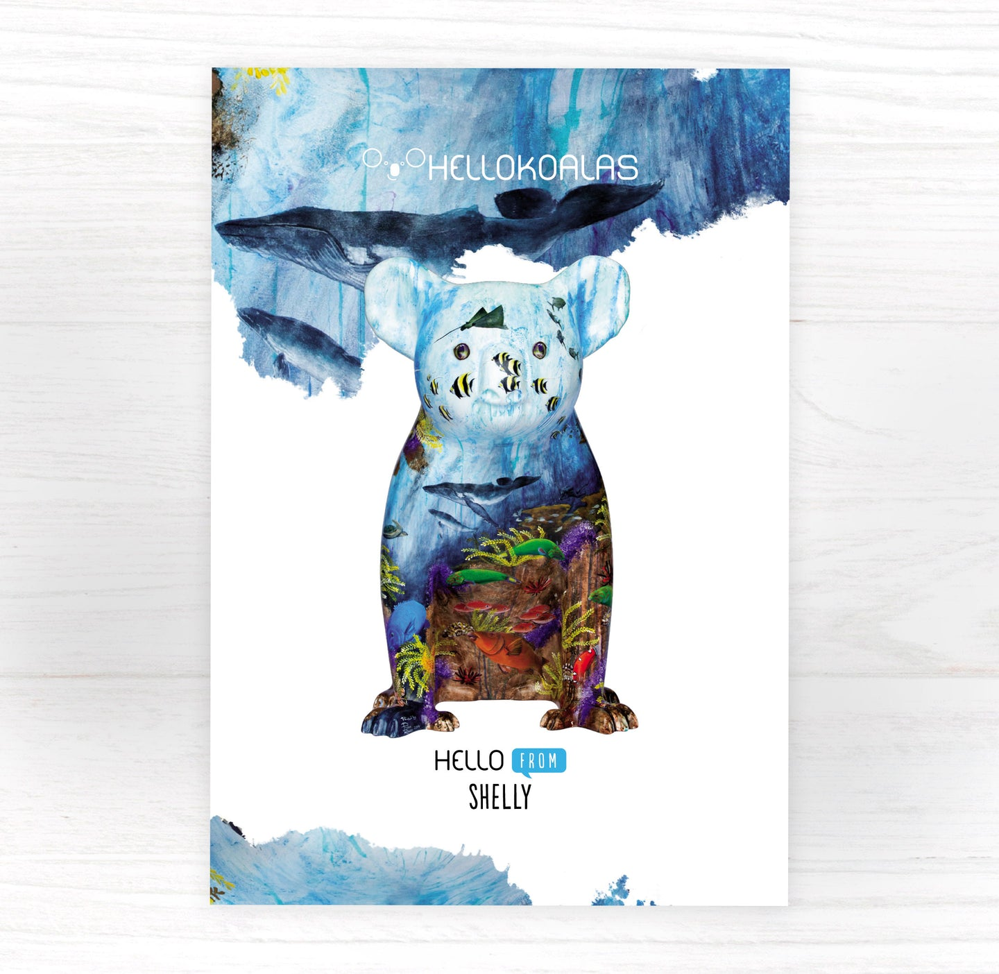Hello Koalas Shelly Postcard