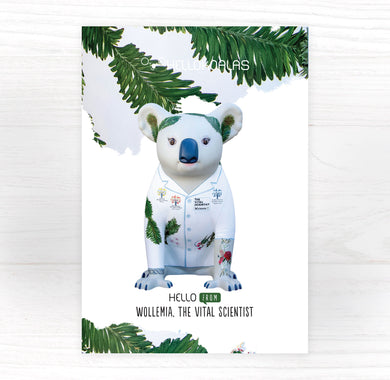 Hello Koalas Wollemia the Vital Scientist Postcard