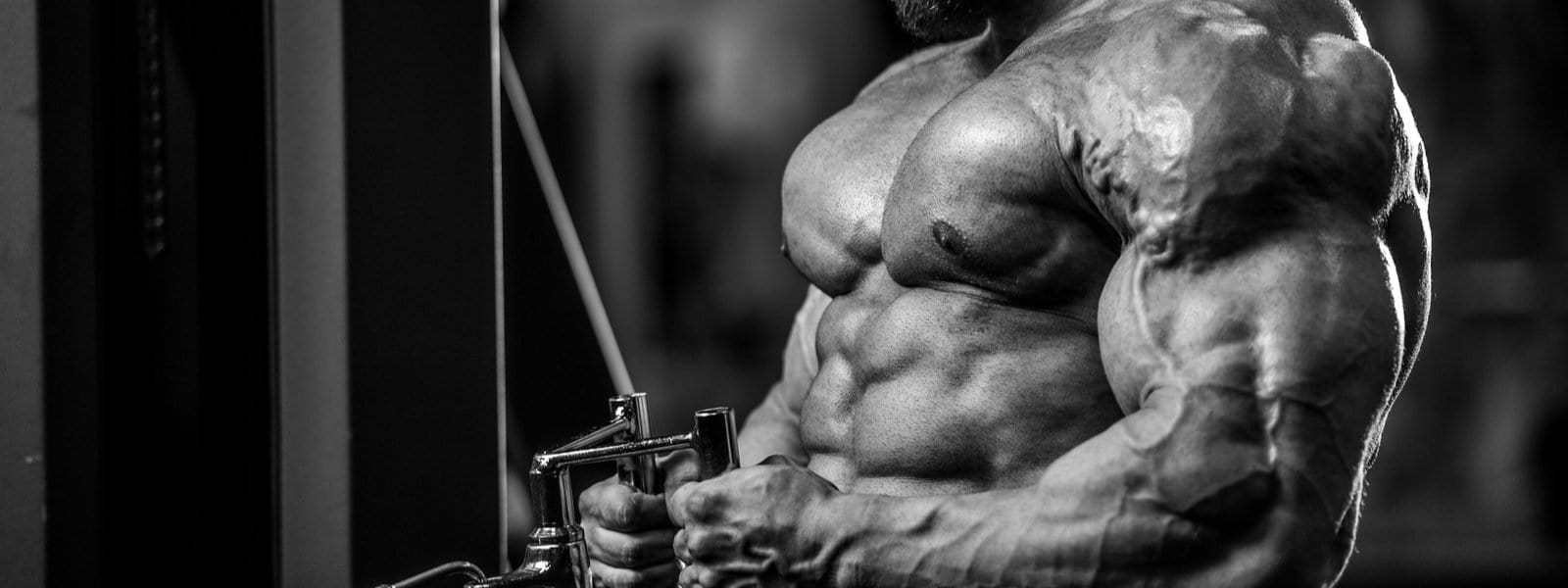 The Best Muscle Building Ingredient Known To Man…and It's Free