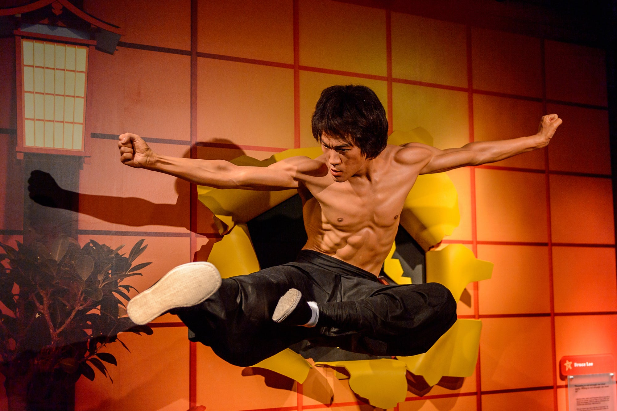 Bruce Lee's Workout Routine & Diet Plan