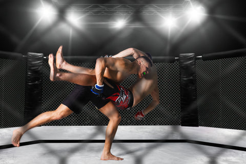 two MMA fighters in the ring