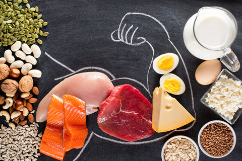 High protein food for body builders as meat, fish, dairy, eggs, buckwheat, oatmeal, nuts, bean, pumpkin seed and sunflower seed.
