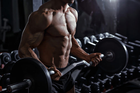 Athlete muscular bodybuilder training biceps curl with dumbbell in the gym
